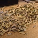Toddler Shreds More Than $1,000 Of His Parents Savings