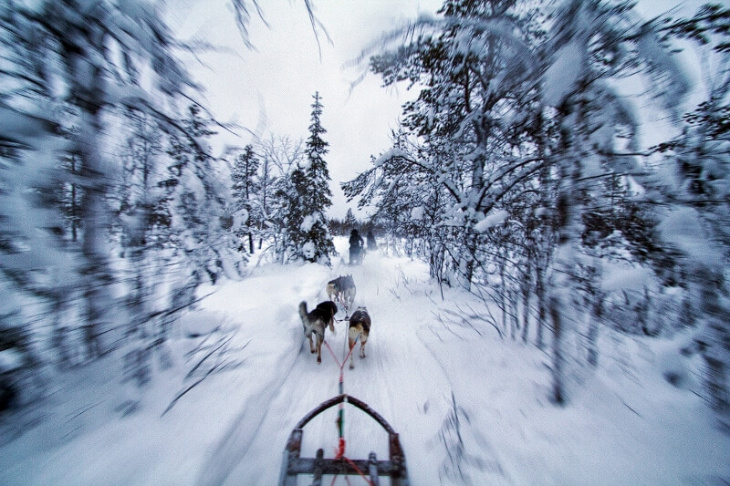 lapland 8 - Here you travel to Lapland