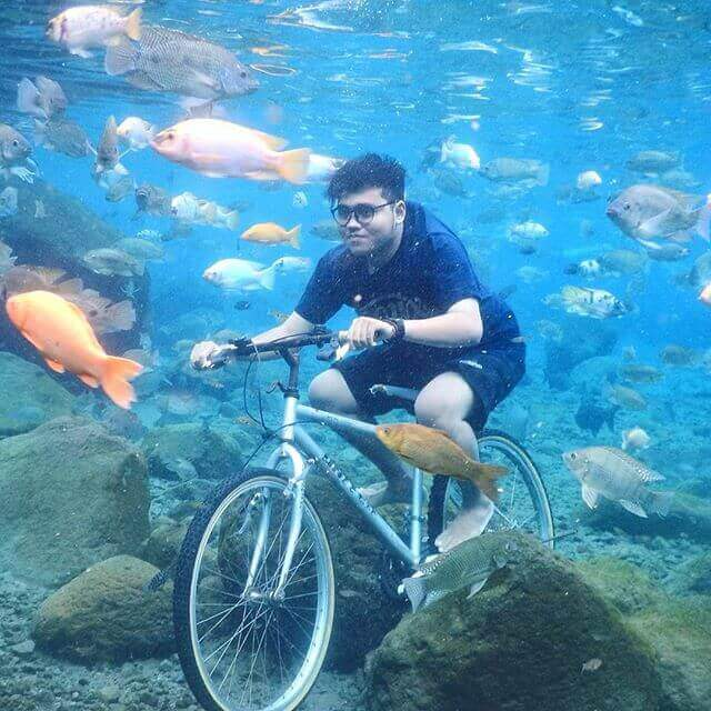 Amazing and Crazy Creativity Underwater Pictures