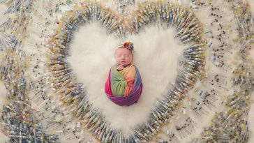 Facebook Packer Family Photography 364x205 - Baby Photographed With The 1616 Needles Used To Conceive Her