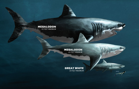 Megalodon - Mariana Trench, the deepest spot of the Earth's Ocean
