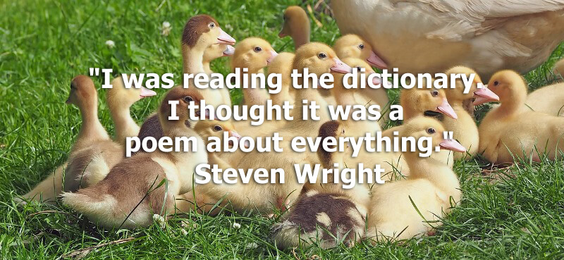 "Funny quote ""I was reading the dictionary. I thought it was a poem about everything."" Steven Wright"