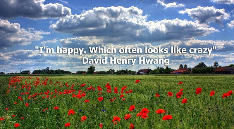 "Funny quote ""I'm happy. Which often looks like crazy"" David Henry Hwang"