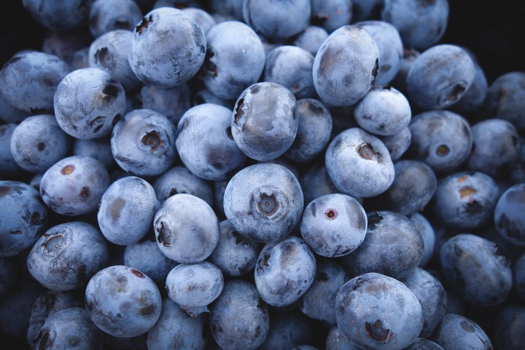Feed Your Brain Good Health With These 6 Foods 4