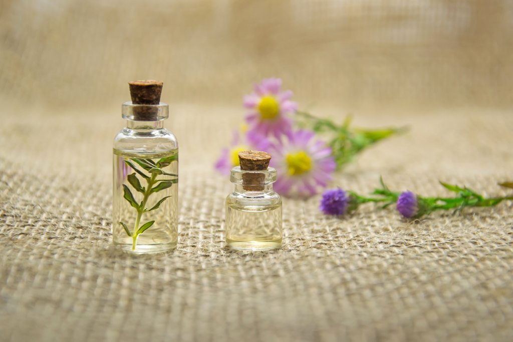 essential oil clear Here are the essential oils that help with weight loss.