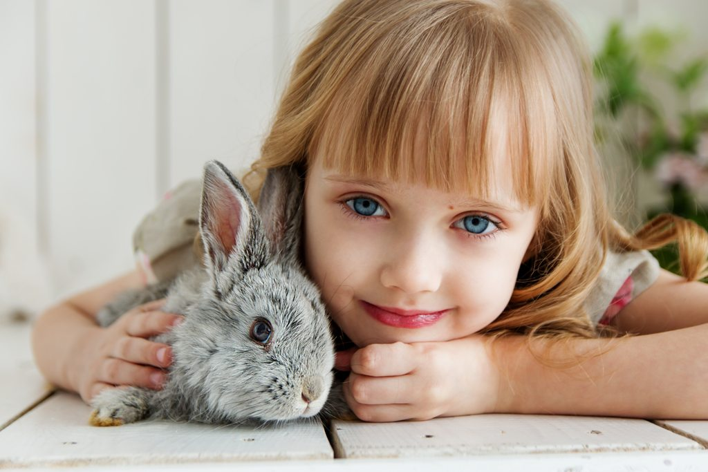 small girl holding rabbit