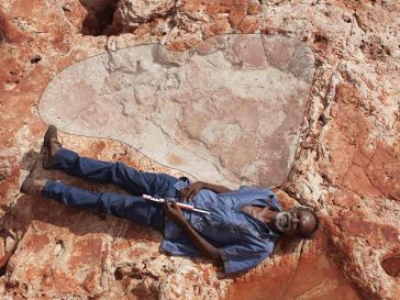 largest dinosaur footprints